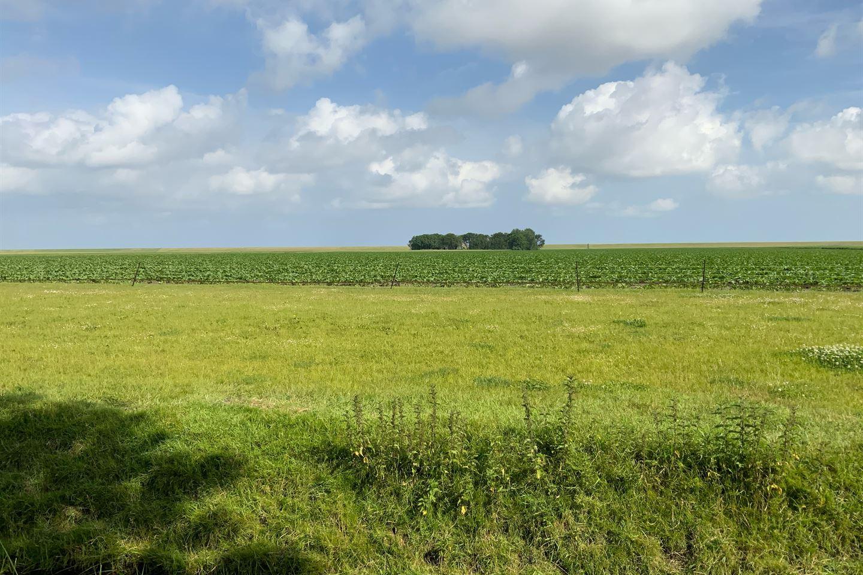 Bekijk foto 2 van Nieuwebildtdijk 122