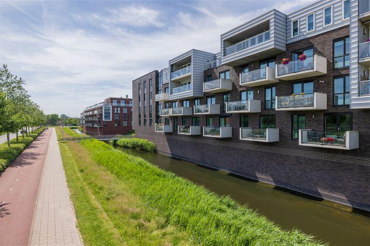 Noordmanshof 80