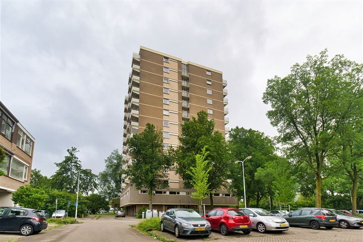 Graaf Janstraat 151