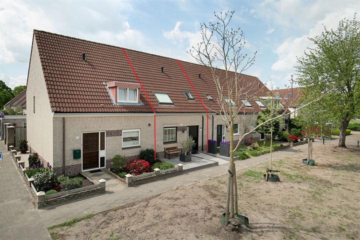 Rijnlaan 81