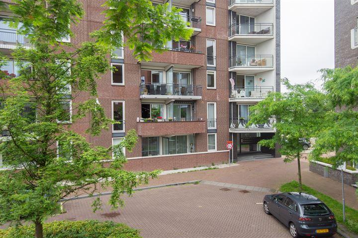 Zilverstein 101