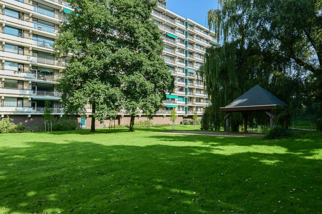 Bekijk foto 1 van Groningensingel 231