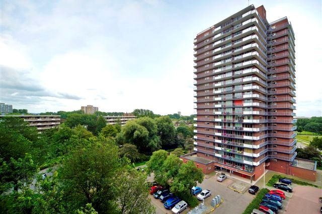 Dunantstraat 1443