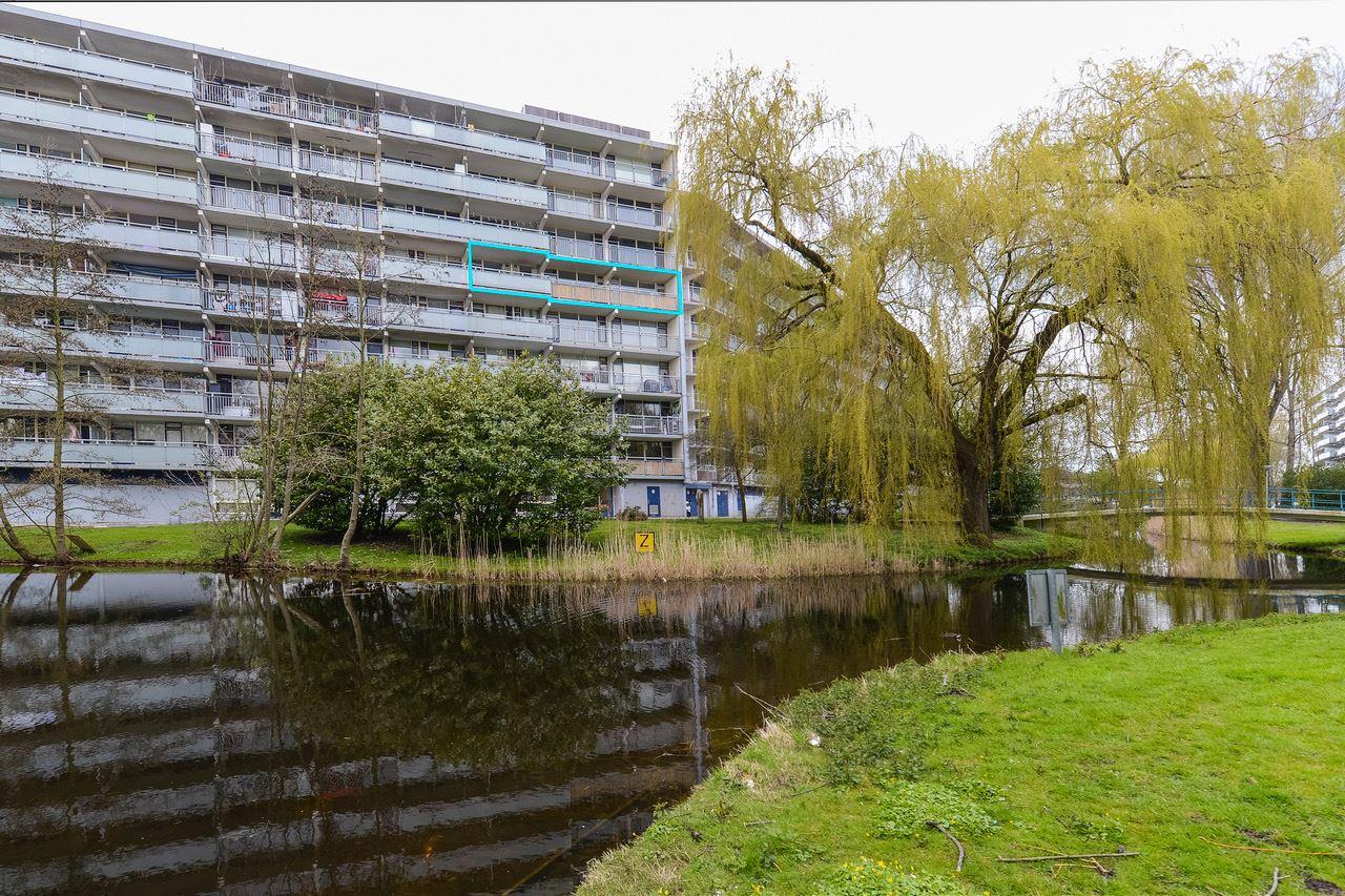 Bekijk foto 1 van Condorhorst 98
