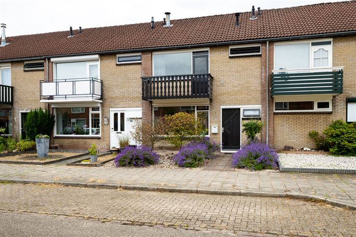 Toon Borghuisstraat 36