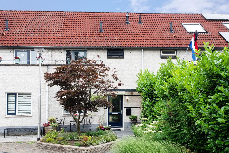 Bekijk foto 1 van Leuvensbroek 1205