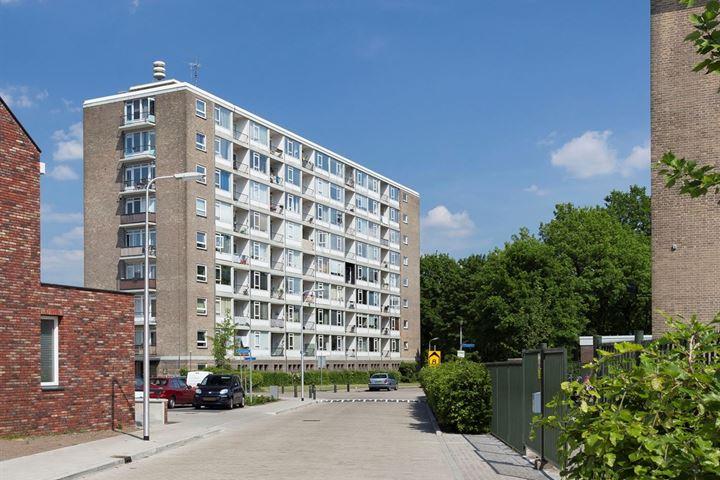 Lambert Heijnricsstraat 20 E
