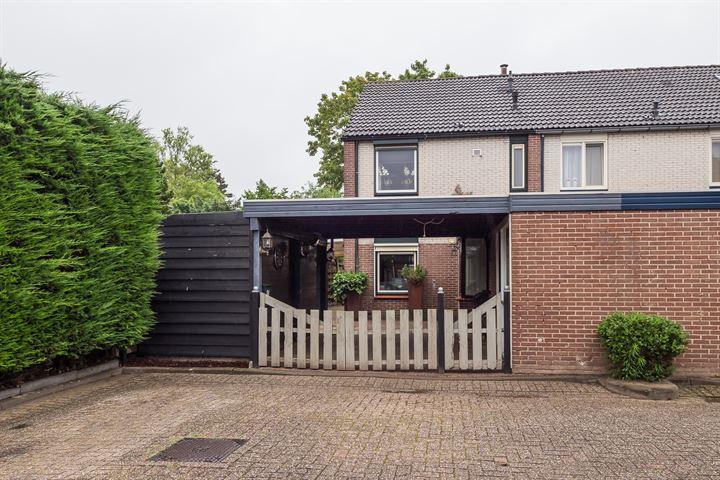 Hooge Hoeven 84