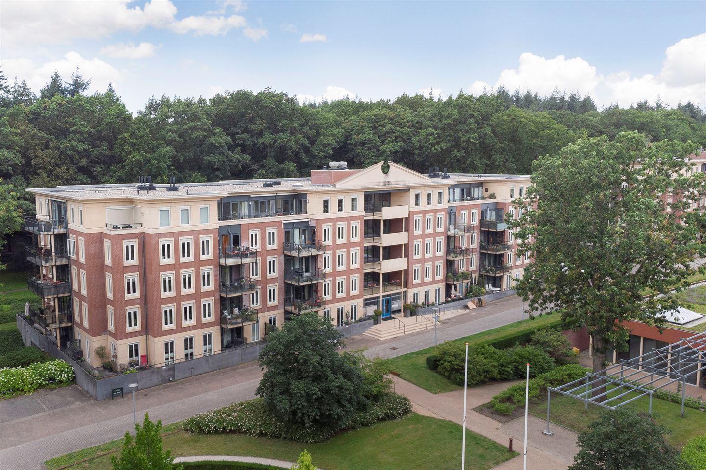 Bekijk foto 1 van Rhenendael 52