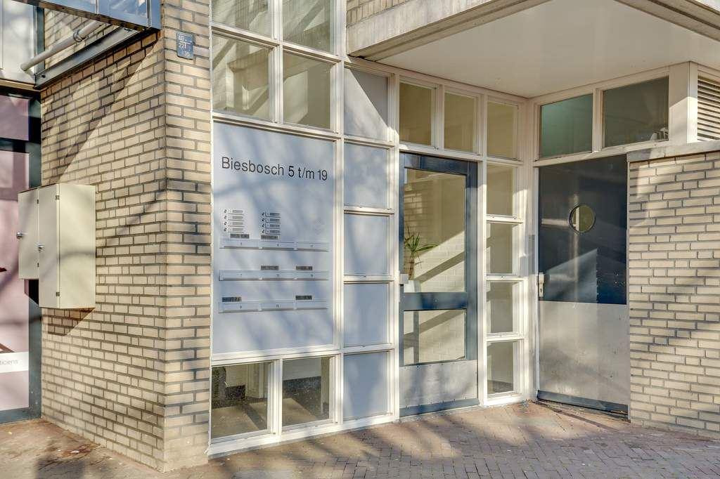 Bekijk foto 4 van Biesbosch 17