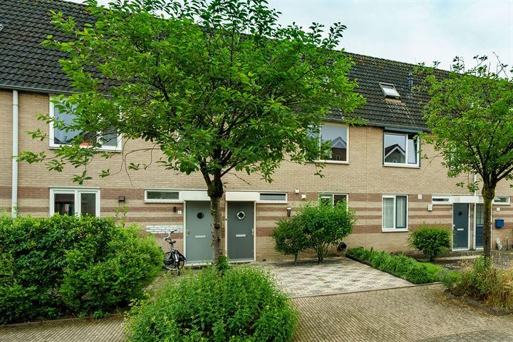 Willem Elsschotstraat 9
