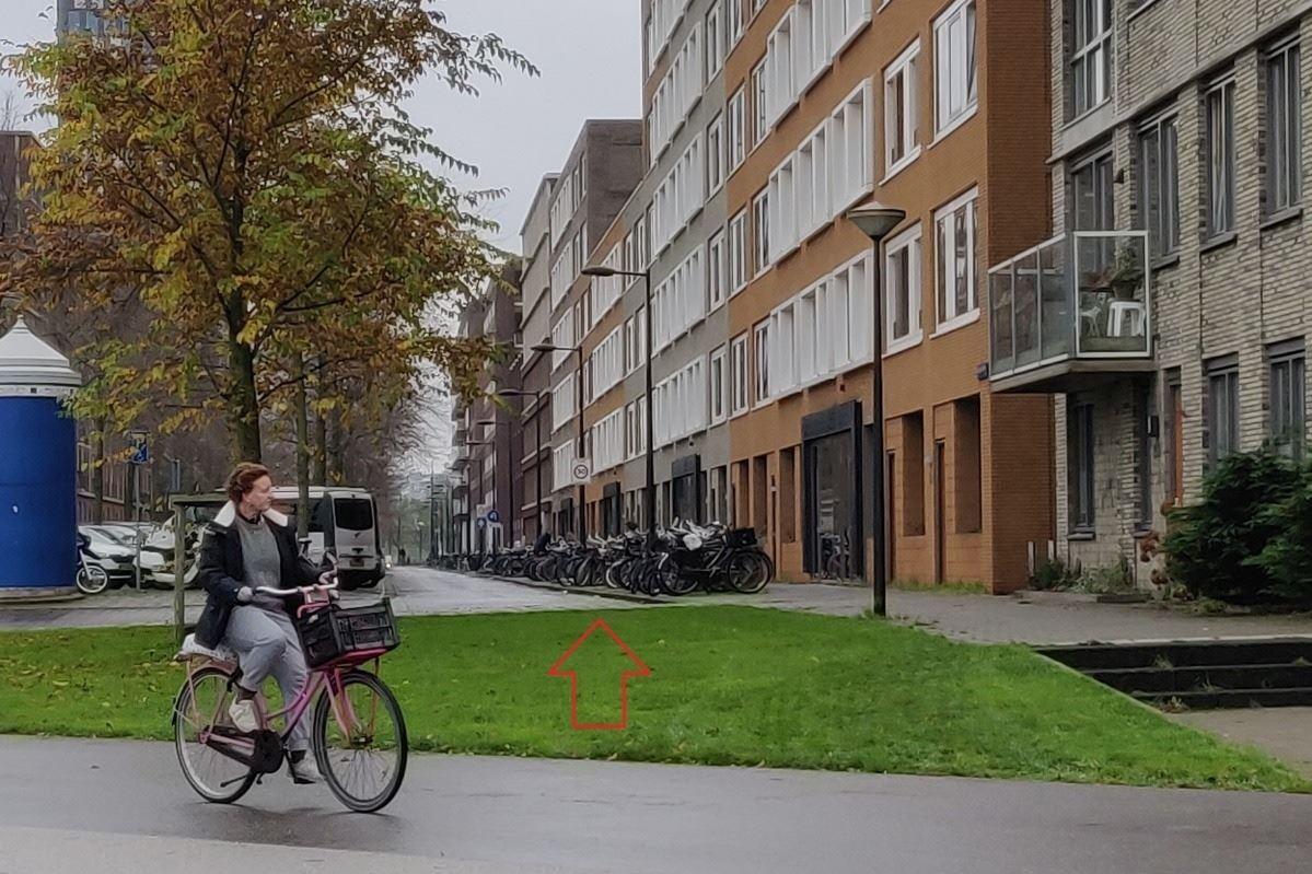 Bekijk foto 1 van Amstelvlietstraat 305