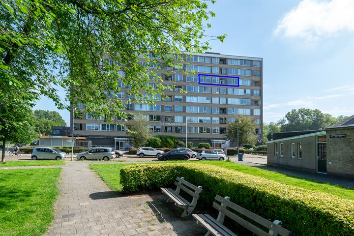 Jan van Goyenstraat 254