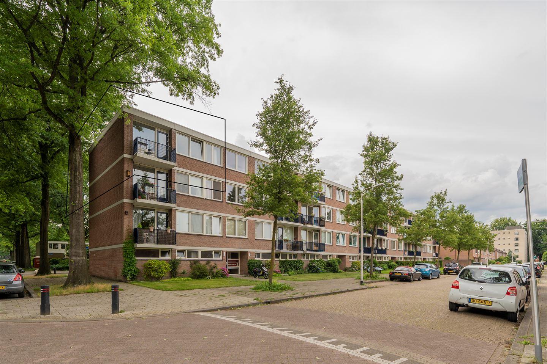 Bekijk foto 1 van Kasteel Twikkelstraat 43