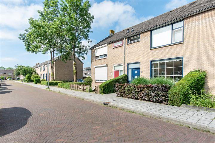 Biesbosstraat 10