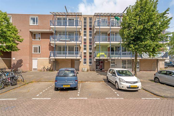 Alfred Döblinstraat 109