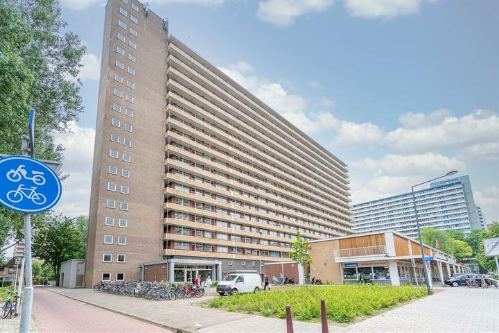 Hendrik Tollensstraat 238