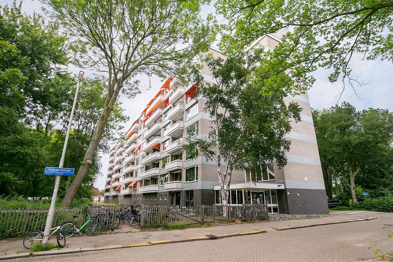 Bekijk foto 1 van Everaertstraat 103