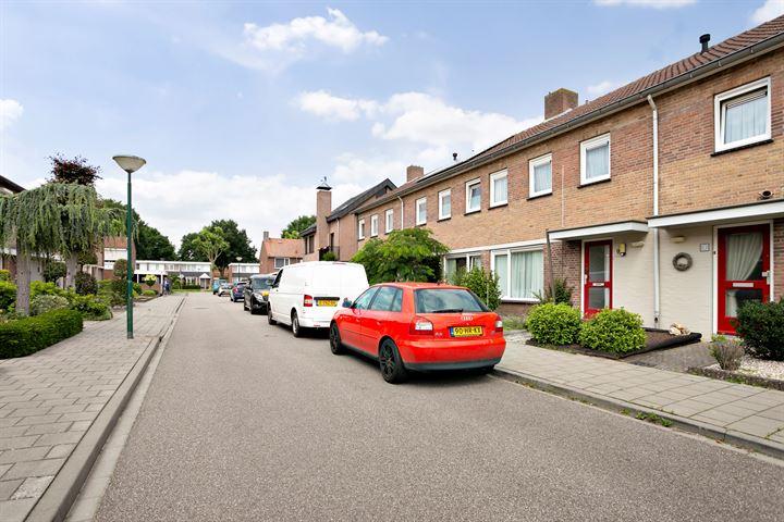 Johan van Seggelenstraat 9