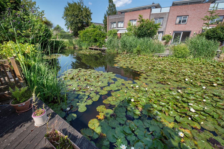 Bekijk foto 5 van Rieteiland 48