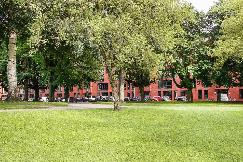 Bekijk foto 1 van Westenburgerweg 260