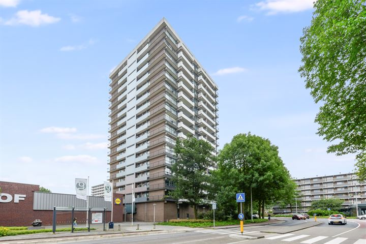 Groenhof 315
