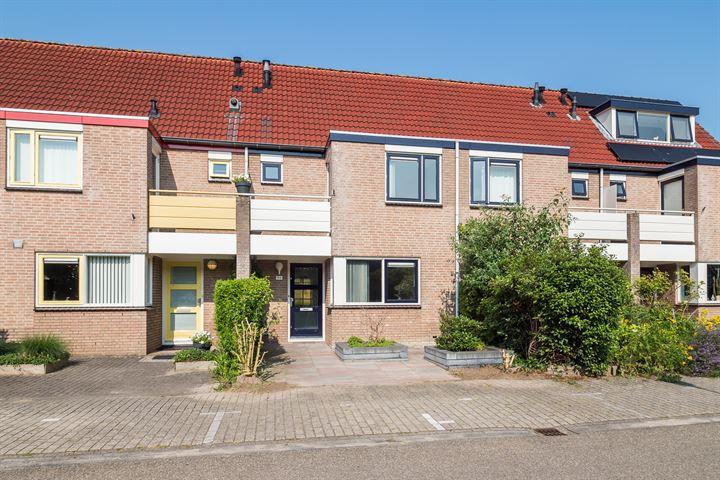Amstel 194