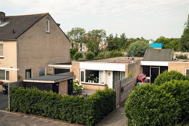 Gebr. Conijnstraat 55