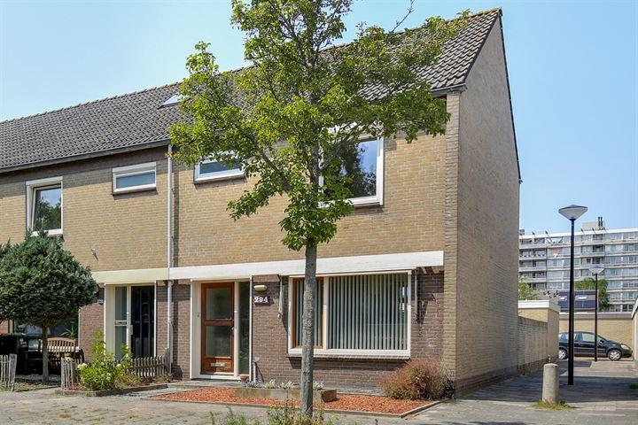 Heemskerkerweg 294