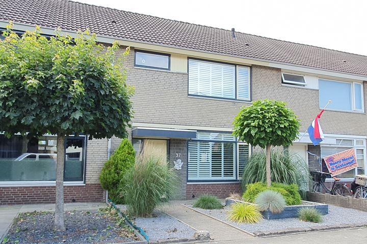 Ruysdaelstraat 37