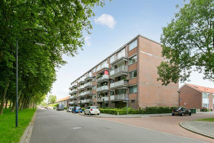 Rijnauwenstraat 53