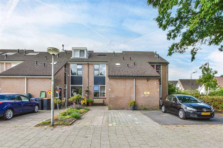 Sternhof 4