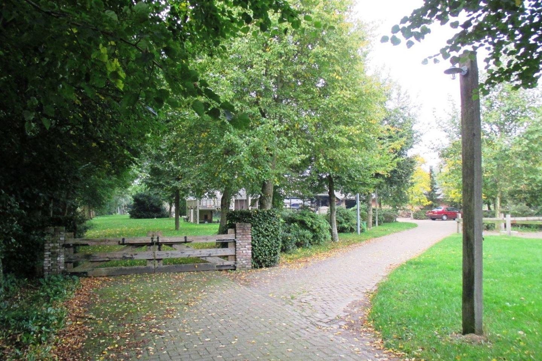 View photo 3 of Dedemsvaart