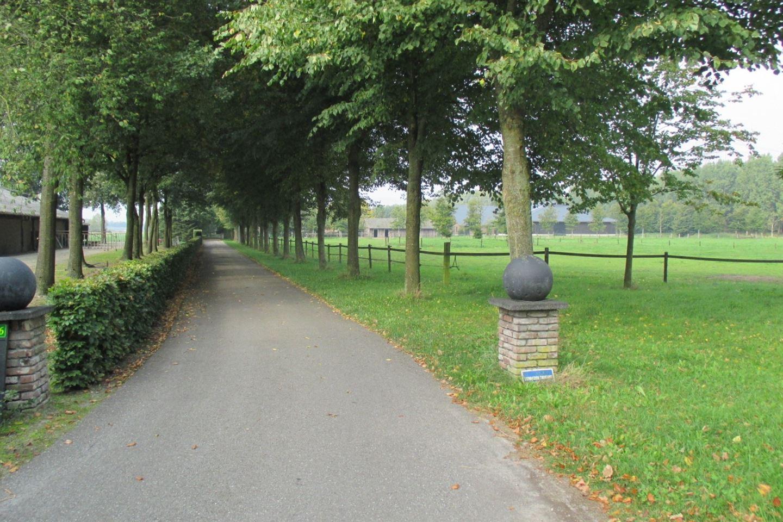 View photo 2 of Dedemsvaart