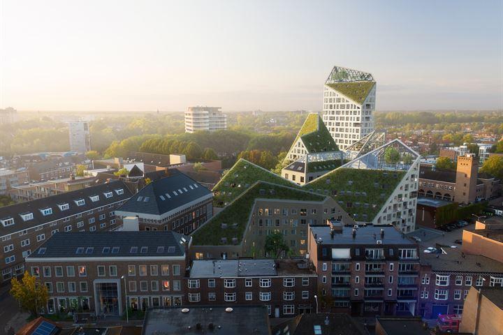 Eindhoven - Nieuw Bergen