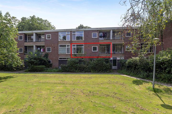 Van Houtenstraat 26