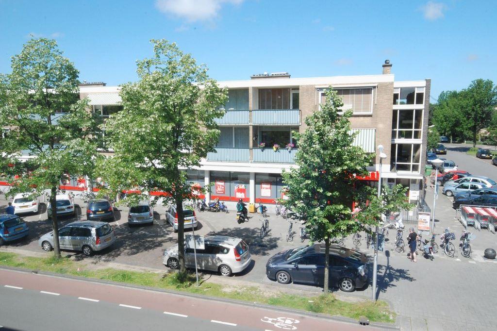 Bekijk foto 3 van Starrenburglaan 124