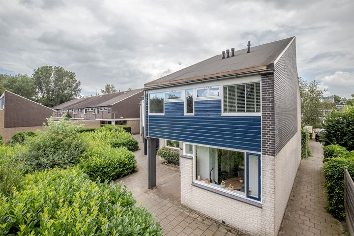 Mosterdhof 218