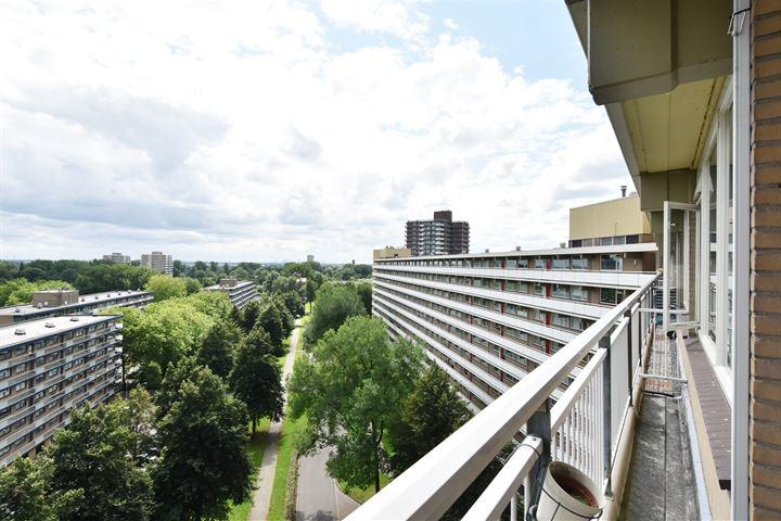 Dunantstraat 853