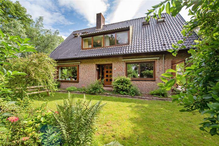 Bergse Maas 16