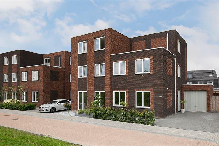 Biesbosch 34