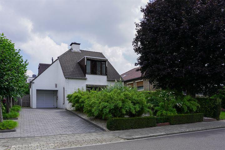 Lichtenberg 19