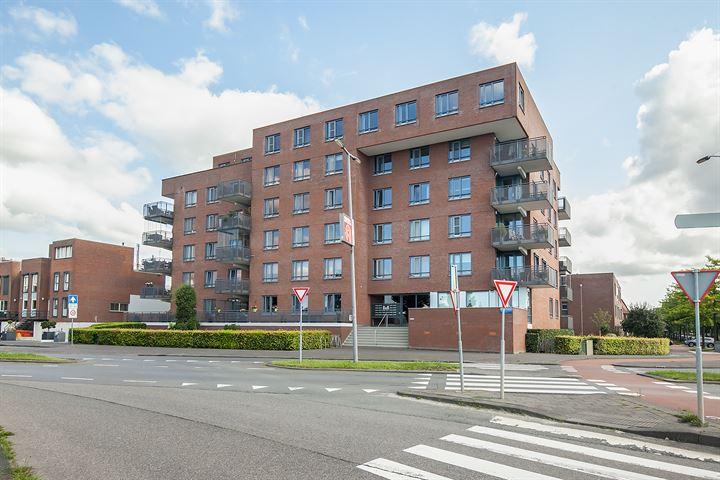 Brandingdijk 202
