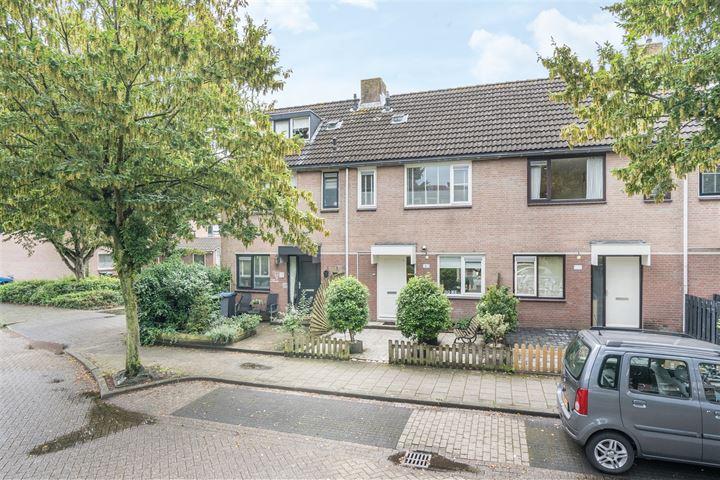 Haagbeukhof 183