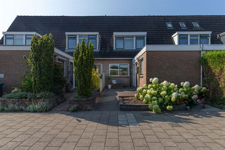 Willem de Zwijgerstraat 13