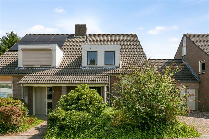 Hooiland 19
