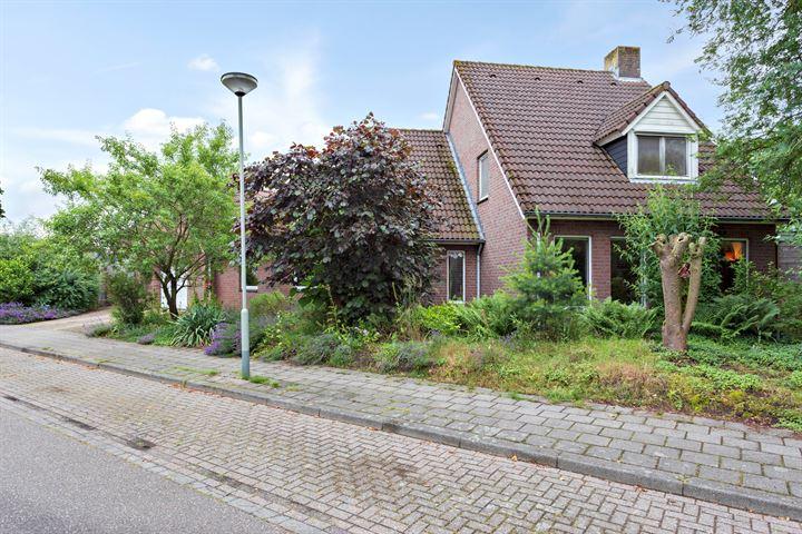 Jacob van Marisring 31