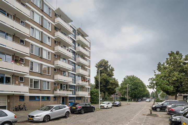 Van der Helmstraat 251