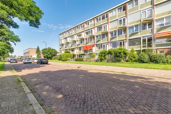 Ruys de Beerenbrouckstraat 121
