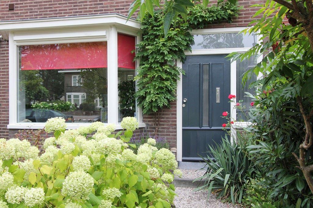 Bekijk foto 2 van Boschdijk 386